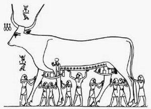 Celestial Cow Inscription